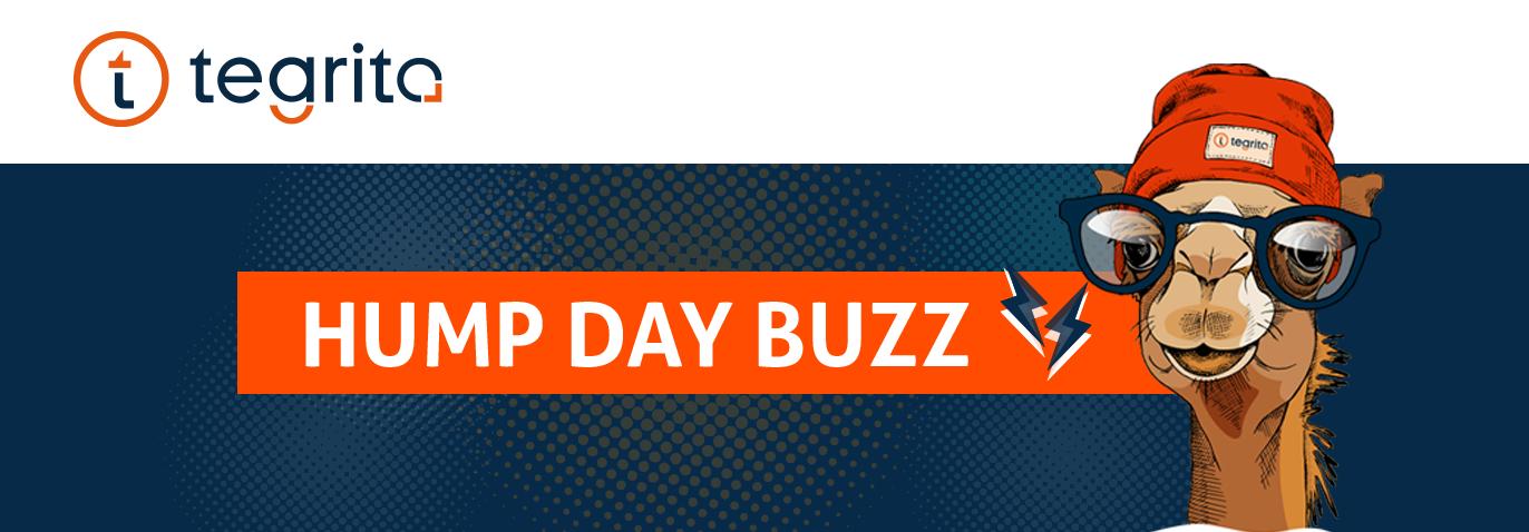 buzz-banner1